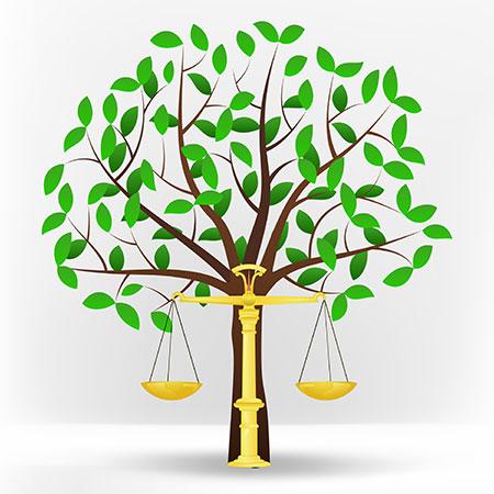 Resultado de imagen para ecology law